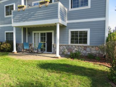 Forest County, Iron Wi County, Langlade County, Lincoln County, Oneida County, Vilas County Condo/Townhouse For Sale: 741 Rivers Edge Dr #E