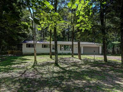 Minocqua Single Family Home For Sale: 9401 Brinkland Ct