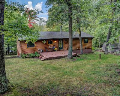 Forest County, Iron Wi County, Langlade County, Lincoln County, Oneida County, Vilas County Single Family Home For Sale: 6102 Fetke Ln