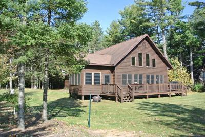 Langlade County, Forest County, Oneida County Single Family Home For Sale: 11687 Shirley Glenn Ln