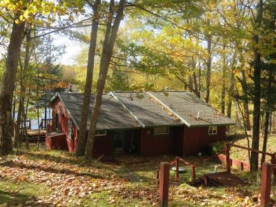 Langlade County, Forest County, Oneida County Single Family Home For Sale: 4130 Goodyear Lake Rd