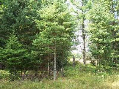 Eagle River WI Commercial For Sale: $39,900