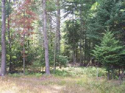 Eagle River WI Commercial For Sale: $29,900