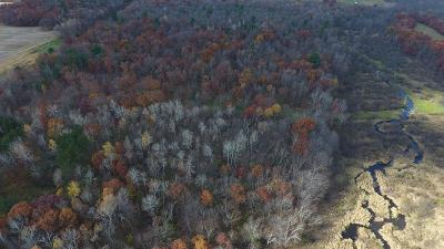 Jackson County, Clark County, Trempealeau County, Buffalo County, Monroe County, Chippewa County, Eau Claire County Residential Lots & Land Active Offer: 20th Avenue