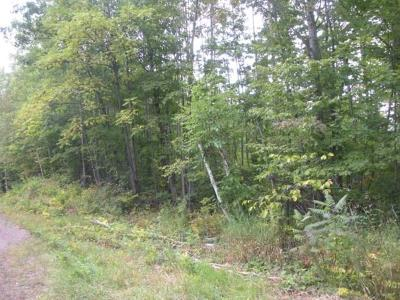 Couderay WI Residential Lots & Land For Sale: $293,750