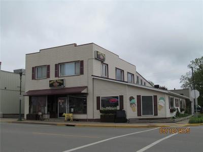 Clark County Commercial For Sale: 102 N Washington Street