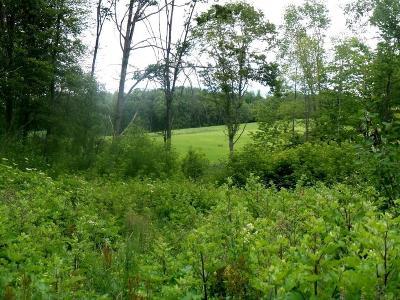 Jackson County, Clark County, Trempealeau County, Buffalo County, Monroe County, Chippewa County, Eau Claire County Residential Lots & Land Active Offer: N Alma Center Rd
