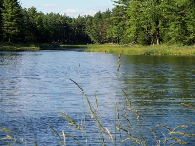 Hatfield WI Residential Lots & Land For Sale: $139,400
