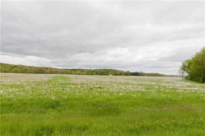 Rice Lake WI Residential Lots & Land For Sale: $189,900