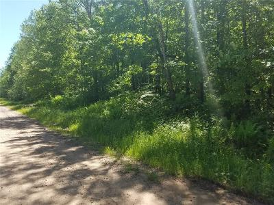 Rice Lake WI Residential Lots & Land Sale Pending: $10,000