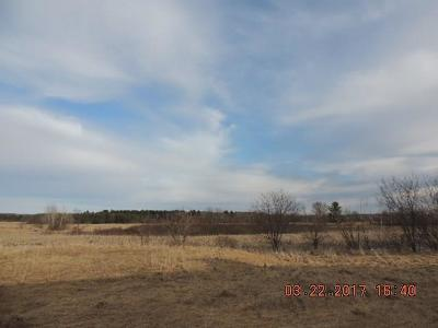 Jackson County, Clark County, Trempealeau County, Buffalo County, Monroe County, Chippewa County, Eau Claire County Residential Lots & Land For Sale: 165th Avenue
