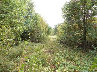 Black River Falls WI Residential Lots & Land For Sale: $16,000