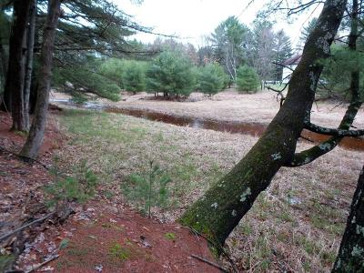 Hatfield WI Residential Lots & Land Sold: $35,000