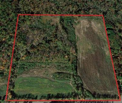 Residential Lots & Land Sold: 40 Acres Old Hwy 95