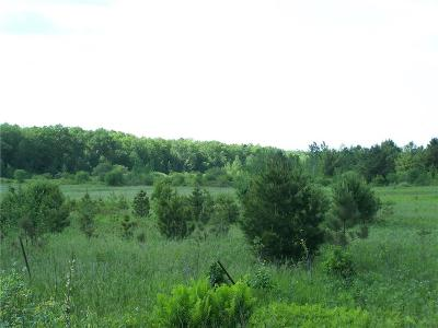 Cameron Residential Lots & Land Active Offer: 14th Avenue (Hwy 8)