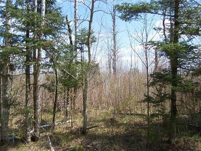 Sawyer County Residential Lots & Land For Sale: N Smith Road