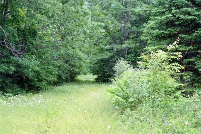 Rusk County Residential Lots & Land For Sale: N8375 Meadow Dam Road