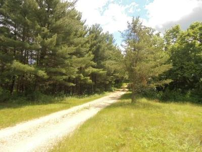 Jackson County, Clark County, Trempealeau County, Buffalo County, Monroe County, Chippewa County, Eau Claire County Residential Lots & Land Active Offer: Bush Rd.
