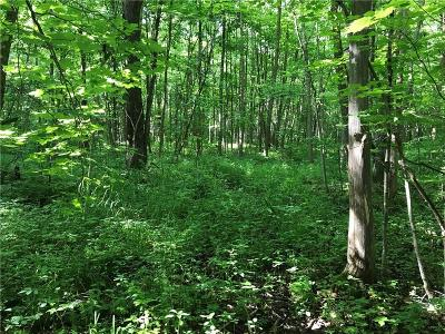 Jackson County, Clark County, Trempealeau County, Buffalo County, Monroe County, Chippewa County, Eau Claire County Residential Lots & Land For Sale: 9865 210th Avenue