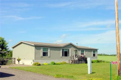 Ladysmith Manufactured Home For Sale: W11010 Boat Landing Rd.