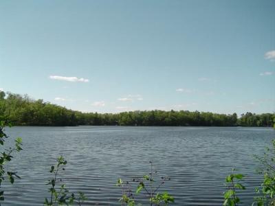 Chetek Residential Lots & Land For Sale: Lot 8 Musky Bay Road