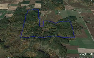 Jackson County, Clark County, Trempealeau County, Buffalo County, Monroe County, Chippewa County, Eau Claire County Residential Lots & Land For Sale: 10367 W Murphy Road