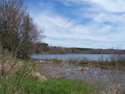 Sawyer County Residential Lots & Land For Sale: Perch Lake Road