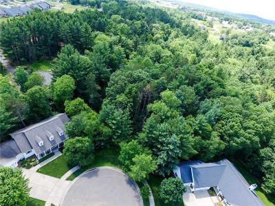 Jackson County, Clark County, Trempealeau County, Buffalo County, Monroe County, Chippewa County, Eau Claire County Residential Lots & Land For Sale: 2911 Quail Ridge Road