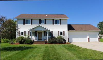 RICE LAKE Single Family Home For Sale: 809 Robin Hood Place