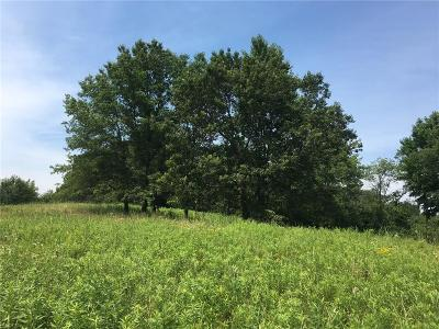 Jackson County, Clark County, Trempealeau County, Buffalo County, Monroe County, Chippewa County, Eau Claire County Residential Lots & Land For Sale: 10th 35+/- Acres Avenue