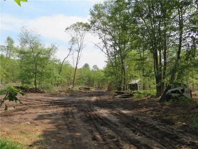 Jackson County, Clark County, Trempealeau County, Buffalo County, Monroe County, Chippewa County, Eau Claire County Residential Lots & Land For Sale: Sand Lane