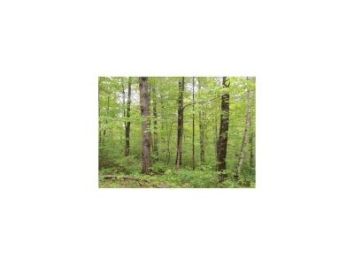 Hayward WI Residential Lots & Land For Sale: $8,000