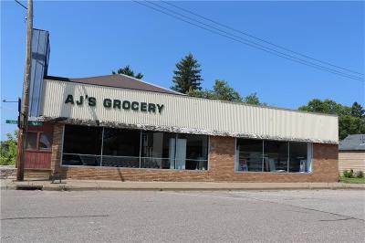 Jackson County Commercial For Sale: 100 N Main Street