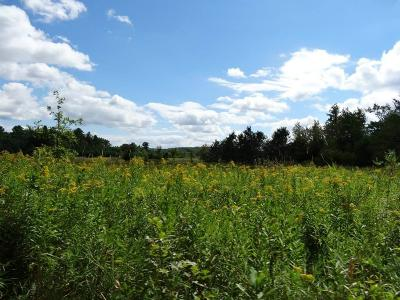 Jackson County, Clark County, Trempealeau County, Buffalo County, Monroe County, Chippewa County, Eau Claire County Residential Lots & Land For Sale: Lot 0 Hwy 12