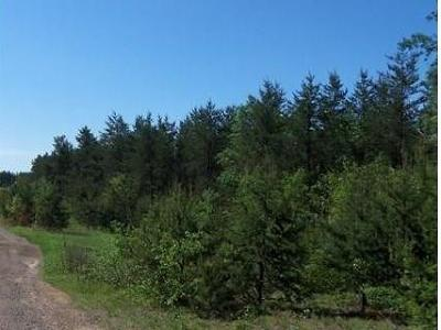 Trego WI Residential Lots & Land For Sale: $16,900