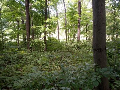Warrens WI Residential Lots & Land Sold: $38,000