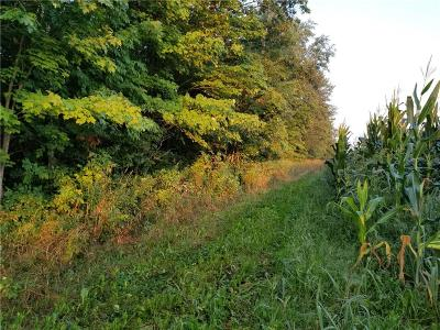 Jackson County, Clark County, Trempealeau County, Buffalo County, Monroe County, Chippewa County, Eau Claire County Residential Lots & Land For Sale: 230th Ave.