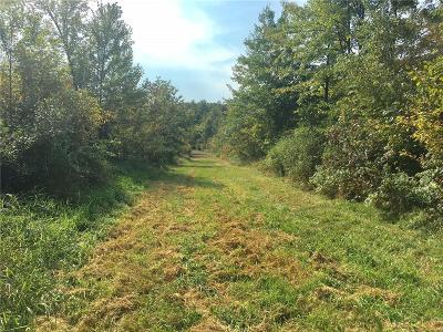 Jackson County, Clark County, Trempealeau County, Buffalo County, Monroe County, Chippewa County, Eau Claire County Residential Lots & Land For Sale: 105th Ave 77.4 Acres