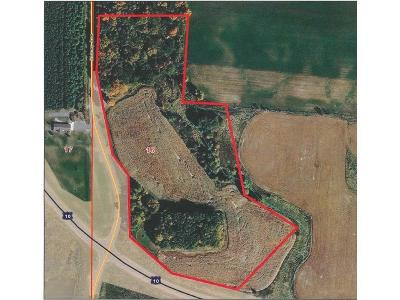 Clark County Residential Lots & Land Active Offer: N3806 Sidney Avenue