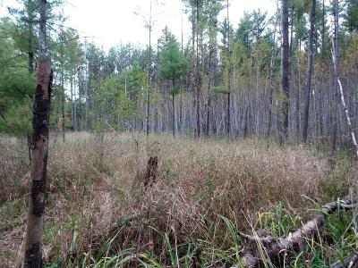 Jackson County, Clark County Residential Lots & Land For Sale: 4.01 Acres Deer Lane