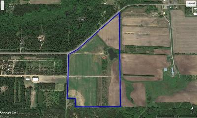 Jackson County, Clark County Residential Lots & Land For Sale: W15997 Cty Hwy B