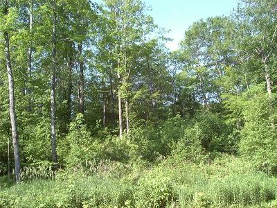 Couderay WI Residential Lots & Land For Sale: $59,500