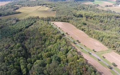 Jackson County, Clark County, Trempealeau County, Buffalo County, Monroe County, Chippewa County, Eau Claire County Residential Lots & Land For Sale: Xxx Steinke Rd.