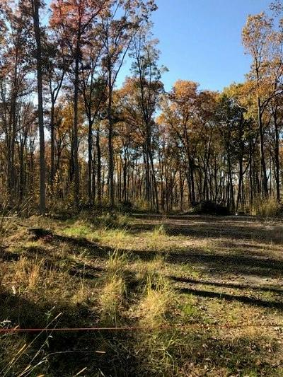 Clark County Residential Lots & Land Active Offer: Hickman Road