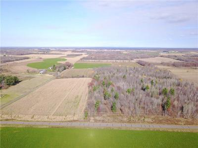 Jackson County, Clark County, Trempealeau County, Buffalo County, Monroe County, Chippewa County, Eau Claire County Residential Lots & Land For Sale: 105th Avenue