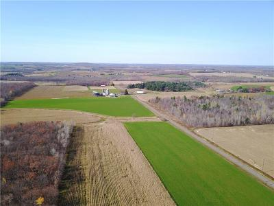 Jackson County, Clark County, Trempealeau County, Buffalo County, Monroe County, Chippewa County, Eau Claire County Residential Lots & Land For Sale: 00 230th Avenue