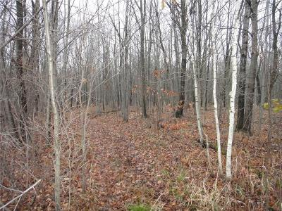 Jackson County, Clark County, Trempealeau County, Buffalo County, Monroe County, Chippewa County, Eau Claire County Residential Lots & Land For Sale: Lot 3 290th Street