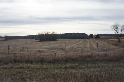 Jackson County, Clark County, Trempealeau County, Buffalo County, Monroe County, Chippewa County, Eau Claire County Residential Lots & Land For Sale: Xiong Boulevard