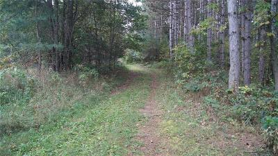Jackson County, Clark County, Trempealeau County, Buffalo County, Monroe County, Chippewa County, Eau Claire County Residential Lots & Land For Sale: Haney Drive