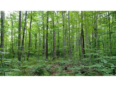 Cameron Residential Lots & Land For Sale: 2754 16th Avenue